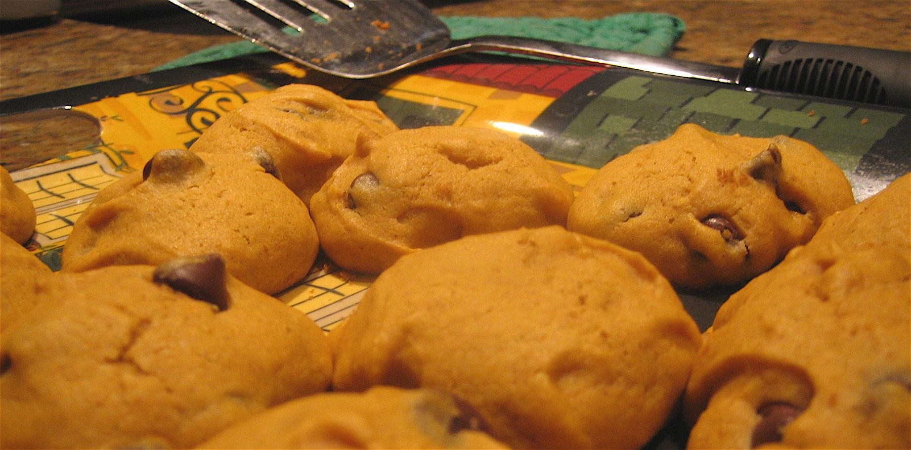 Recipe: Pumpkin Chocolate Chip Cookies | ELIZABITES