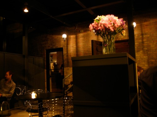 The outdoor garden patio at Nightwood